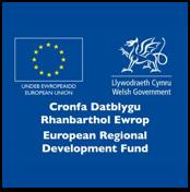 ERDF Wales